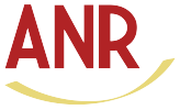 ANR Chartered Professional Accountants